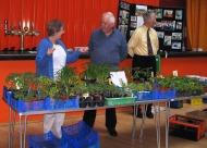KL Plant Sale 2010